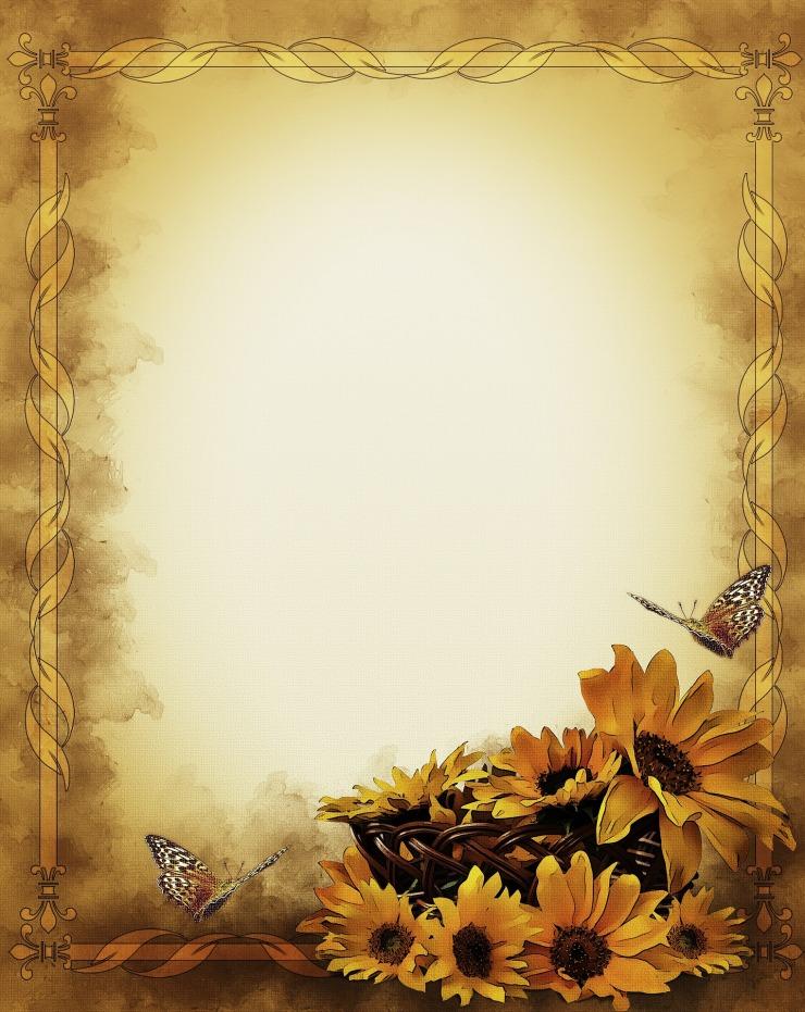 sunflowers-805130_1920.jpg