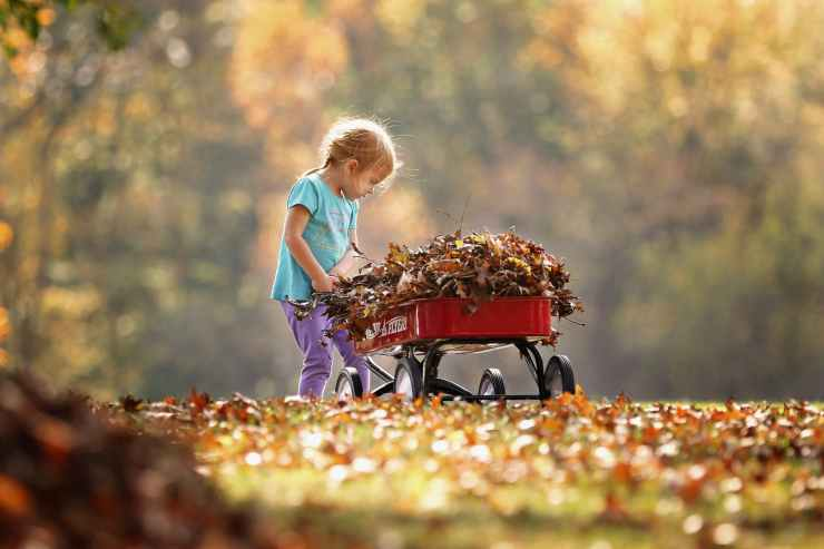 photography of child pushing the wagon